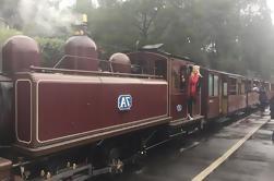Excursión de un día a Healesville Sanctuary y Puffing Billy desde Melbourne