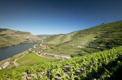 Excursión de un día al valle y vino de Oporto desde Porto con crucero y almuerzo opcional