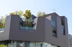 Tour Contemporáneo de Arquitectura y Diseño en Tokio