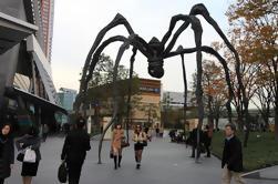 Excursión a pie de arquitectura con un estudioso de Tokio