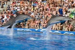 Évitez les files d'attente: Mallorca Marineland Tour