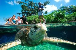 Palma Aquarium Entree met Transfers