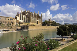 Paseo privado: Palma de Mallorca Walk plus Cruise