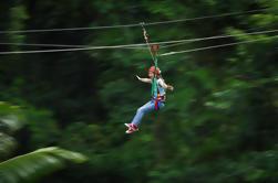 Daintree Rainforest Zipline e Dia dos Animais Habitat Day Trip