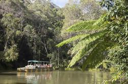 Melhor de Kuranda Incluindo Skyrail, Kuranda Scenic Railway e Rainforestation