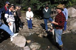 Juneau Shore Exkursion: Gold Bergbau und Schwenken am Gold Creek von Juneau