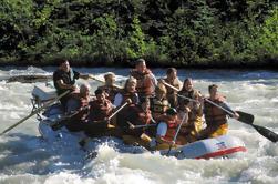 Juneau Uferausflug: Mendenhall Gletscher Rafting Tour