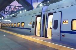 Transferencia de llegada privada: Estación de tren de Roma al hotel