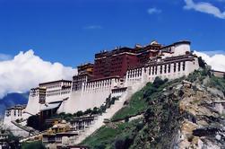 Excursión de medio día al Palacio de Potala desde Lhasa