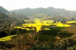 Private Huanglongxi Ancient Town and Countryside