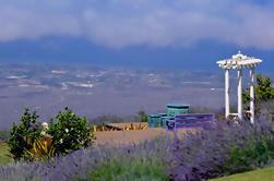 Pequeño grupo de Maui Tour: Haleakala Parque Nacional, Lavender Farm y cata de vinos