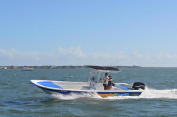 Tour Privado: Auto-Driven o Chartered Powerboat Tour en Coconut Grove de Miami