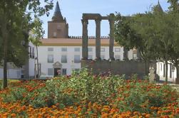 Excursión de un día a Évora desde Lisboa con degustaciones de aceite de oliva