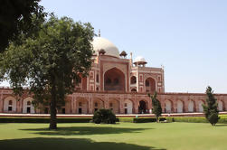 Private Custom Tour: Delhi en un día