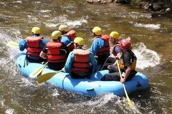 Excursión de la orilla de Falmouth: Aventura del río-Rafting de Jamaica en el río Bueno