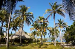 Excursión de un día a las islas Rosario desde Cartagena