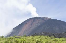 Excursión de un día al volcán Pacaya desde la ciudad de Guatemala
