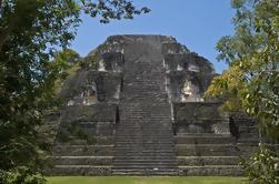 Tikal Excursión de un día desde Guatemala con almuerzo
