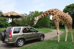 Tour de 2 Días: Safari Auto Chapín Zoológico y Monterrico Black Sand Beach desde Guatemala City o Antigua