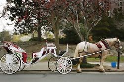 Paseo privado de caballos y carruajes en Central Park