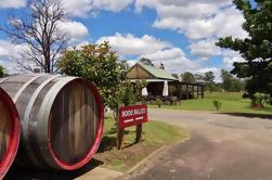 Excursão de degustação de vinhos e queijos em Hunters Valley, grupo pequeno, a partir de Sydney