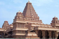 Tour privado a pie: Patrimonio de Delhi del sur, incluyendo Qutub Minar y el Parque Arqueológico de Mehrauli