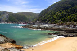 7-Day Garden Route Tour guiado con Winelands y Addo Safari de Ciudad del Cabo
