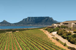 Private Tour: Durbanville Wine Valley Tasting Tour from Stellenbosch