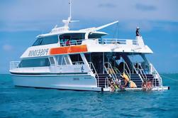 Gran Barrera de Arrecife Exteriores Buceo y Buceo Crucero desde Port Douglas