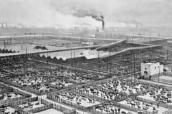 Excursión a pie por la historia de Chicago
