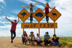 9 días de Perth a Adelaida Nullarbor Campamento de Aventura con la jaula opcional de tiburones Bucear y nadar con focas y delfines
