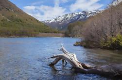 Excursión de un día a Cerro Tronador desde Bariloche