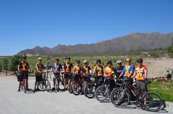 Wijnroute Bike Tour van Cafayate