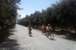 Tolombon Wijngaarden Bike Ride van Cafayate