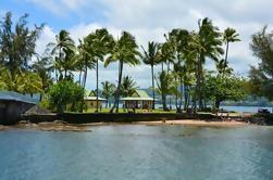 Hawaii Big Island Circle Tour en grupo pequeño: Cataratas - Hilo - Volcano - Black Sand Beach
