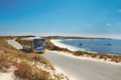 Rottnest Island Explorer Excursión en autobús desde Hillarys Boat Harbour