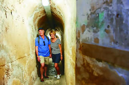 Excursión de un día a la isla de Rottnest desde el puerto de Hillarys Boat o Perth, incluyendo una excursión completa por la isla guiada