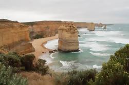 Melbourne Combo: Excursión de un día a Great Ocean Road y excursión de un día a Phillip Island desde Melbourne