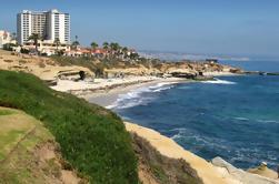 Excursion d'une demi-journée à San Diego avec option croisière