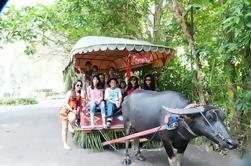 Excursión de un día a Villa Escudero Coconut Plantation desde Manila