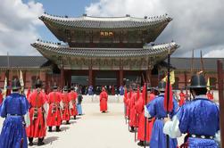 Tour histórico de Seúl: Cheongwadae Sarangchae y Gyeongbokgung Palace
