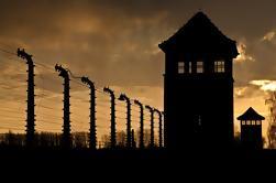 Combinación de Cracovia: Tour de Auschwitz-Birkenau y Cracovia