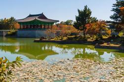 Tour de 3 días desde Seúl: Gyeongju y Busan