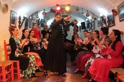 Granada Espectáculo de Flamenco en el Sacromonte y Paseo de Albaicín