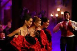 Concierto de Cimbalón de la Sinfonía Danubiana del Año Nuevo