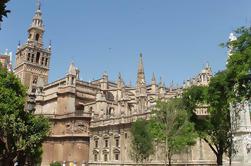 Sevilla Omvisning i Alcazar og katedralen