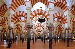 Cordoue: Visite guidée de Séville