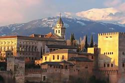 Granada Day Trip from Seville with Skip-the-line Alhambra Access