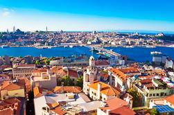 Tour de la ville d'Istanbul avec la croisière du Bosphore