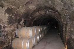 Guidato Wine Day Tour a Ribera del Duero da Madrid